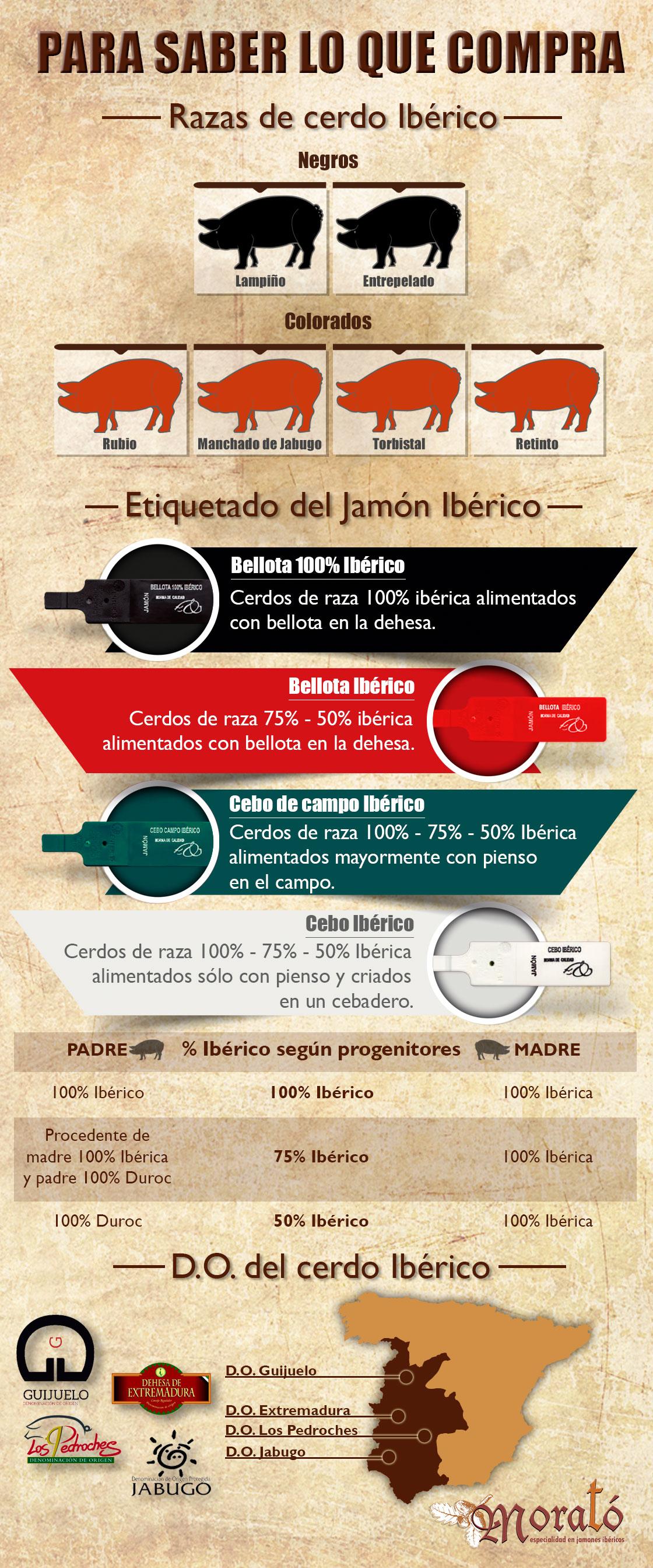 infografia_ibericos